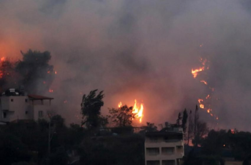 HDP Co-Chairs issue statement about the fires in Hatay, Turkey