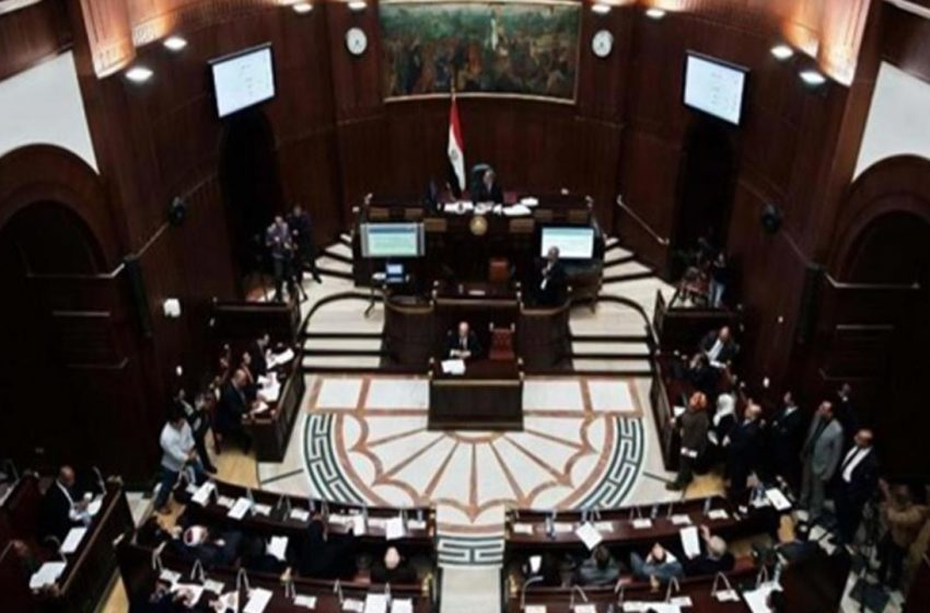 Egypt's Senate convenes for first time in seven years